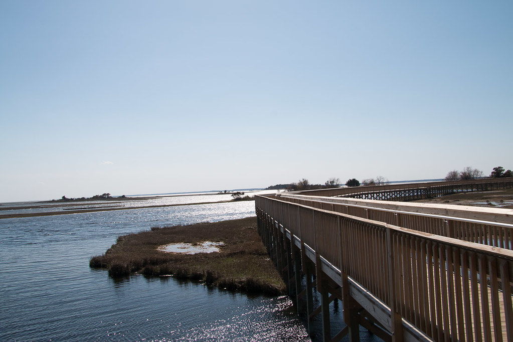 Life of the Marsh Trail at Assateague