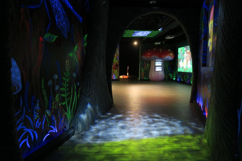 高雄市三民區黃金波蘿城堡 (42)