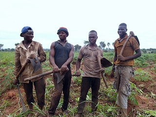 Young farm workers in Ghana