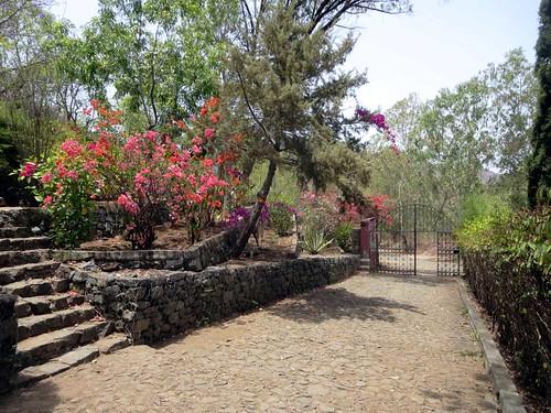 santiago verde island jardim botanico cape nacional barbosa grandvaux