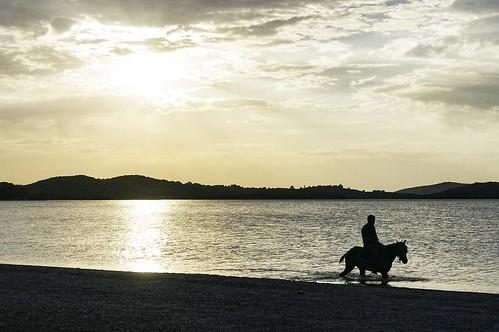 sunset sea horse man yellow greece riding gr rider ηλιοβασίλεμα άλογο θάλασσα κίτρινο vonista etoloakarnania άντρασ καβαλάρησ βόνιτσα αναβάτησ resignment peloponnisosdytikielladakeio peloponnisosdytikielladakeionio ιππέασ ιππεύοντασ παραίτηση