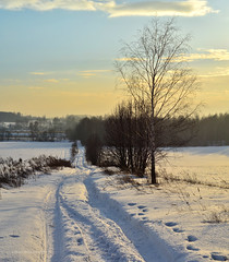 Another winter panorama ❄