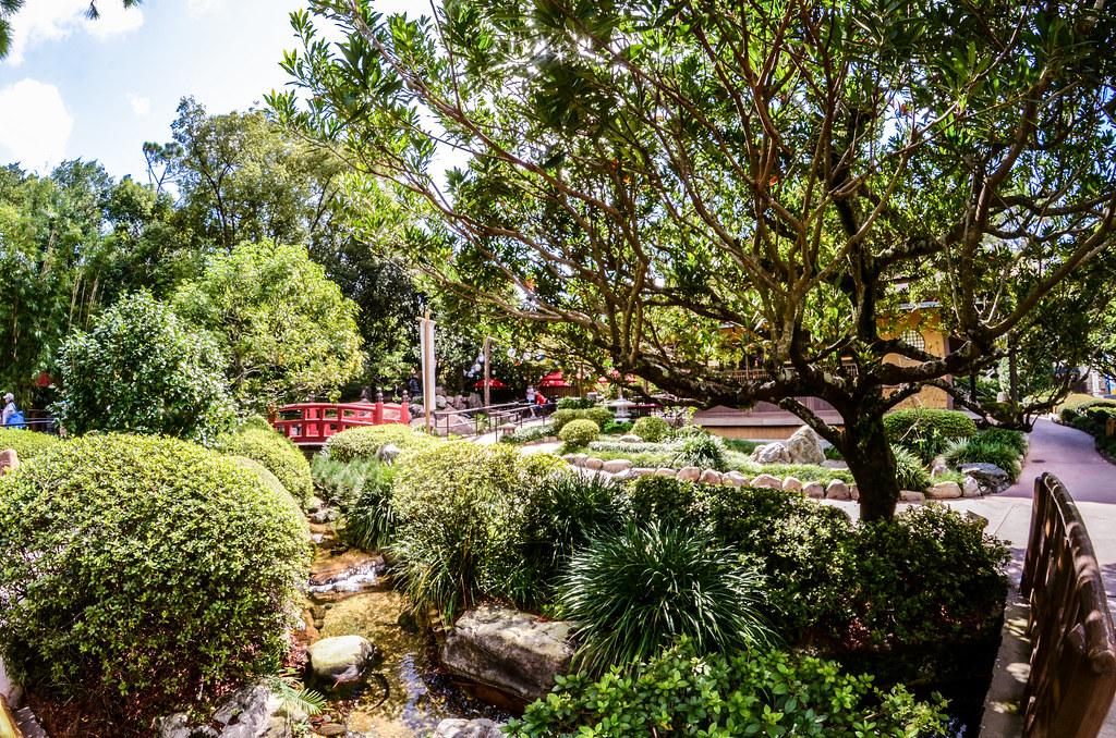 Japan Green gardens