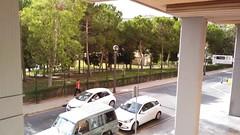 situado frente al ayuntamiento de Benidorm, con fabulosas vistas al parque de L´Aigüera.  Infórmese sin compromiso en su agencia inmobiliaria Asegil. www.inmobiliariabenidorm.com