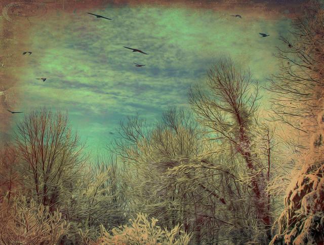 ..New England winter..