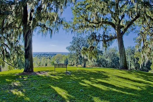 lakewales polkcounty florida historical city cityscape urban downtown skyline centralflorida centralbusinessdistrict skyscraper building architecture commercialproperty cosmopolitan metro metropolitan metropolis sunshinestate realestate commercialoffice modernism postmodern modernarchitecture lakewailes ironmountain boktowergardens sanctuary rollinghills highelevationforflorida bench greengrass