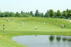 grass, sports, recreation, outdoor recreation, golf, golf course, grassland,