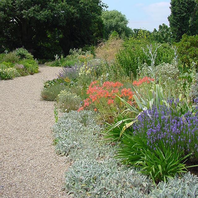 Beth Chatto Dry Garden Flickr Photo Sharing
