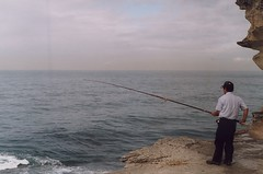 Bondi fishing