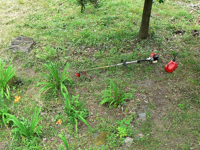 Weed-whacker from Flickr via Wylio