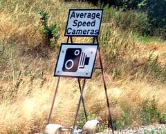 average speed cameras
