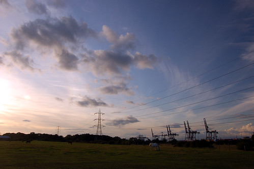 Pylons and ponies