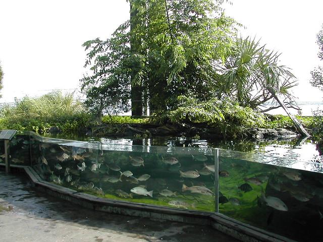 Aquarium Charleston South Carolina Flickr Photo