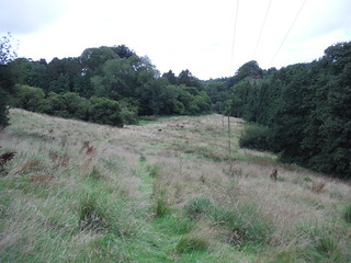 Oddford Vale (I)