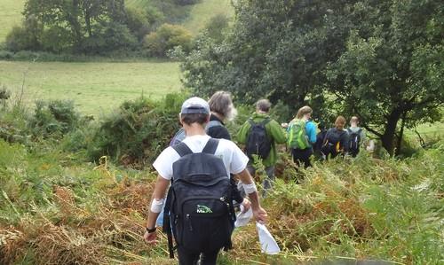 'Going undergrowth'