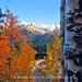 Fall in Rocky Mountain National Park by RondaKimbrow