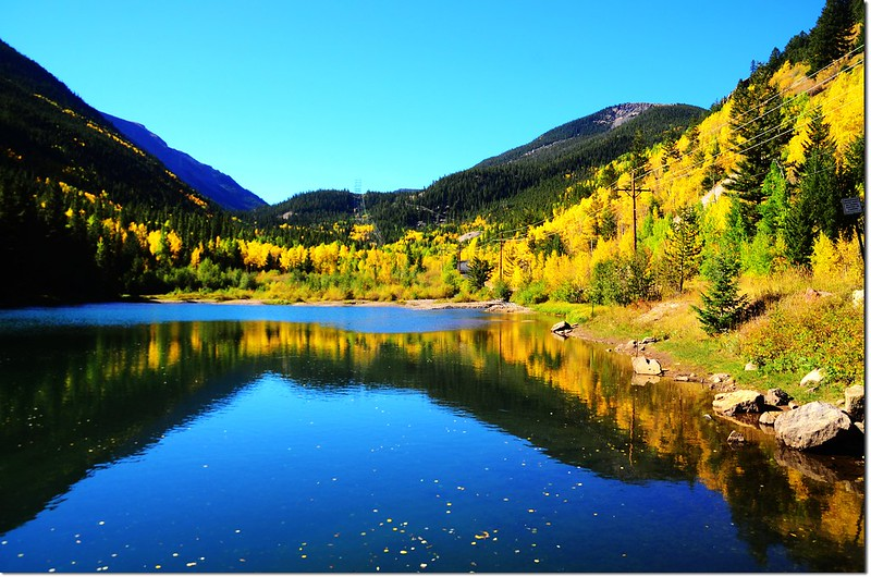 Fall colors at Guanella Pass, Colorado (29)