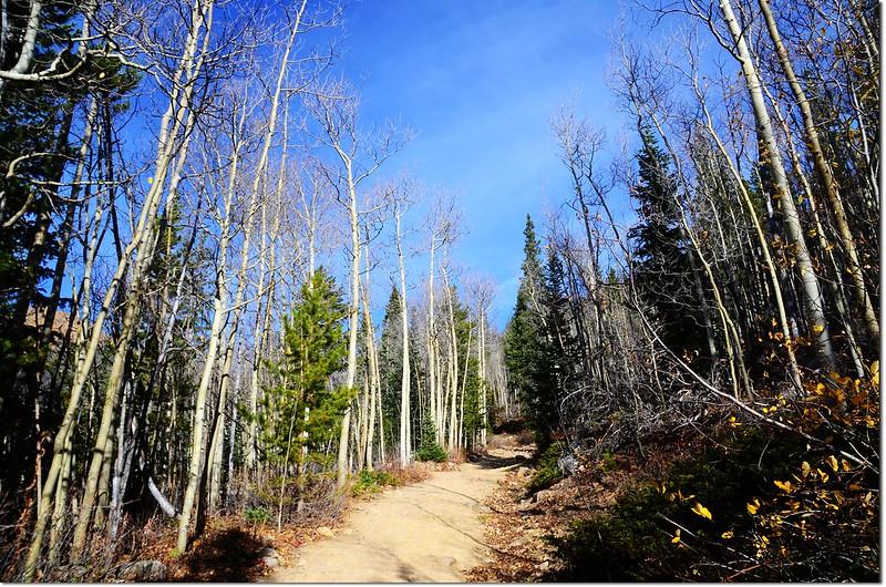 Herman Gulch Trail 3