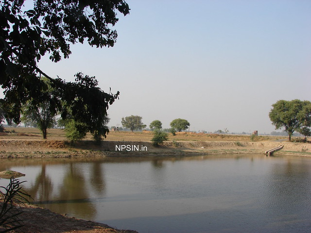 Beautiful water pool called Jhabera with full temple view