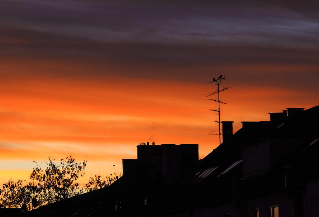 sunrise, sunrise ... *sing*