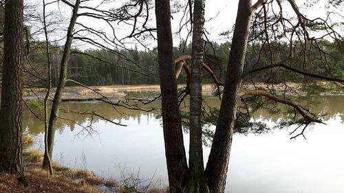 park winter lake europe baltic latvia latvija 2015 kazdanga dzirnavezers katzdangen