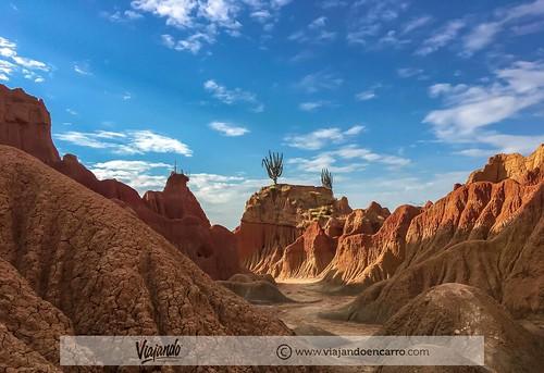 Desierto 41