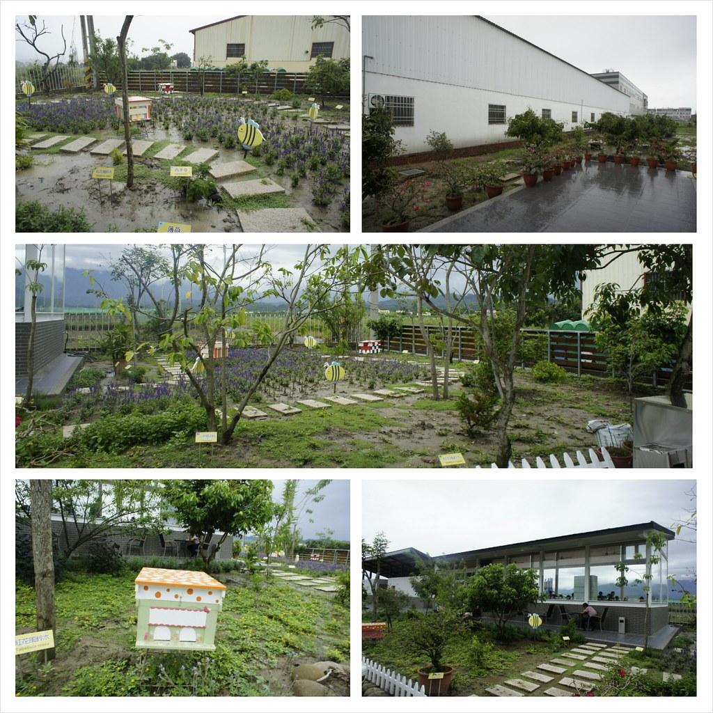 台南東山鄉東和蜂文化觀光工廠 (83)