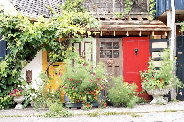 Overgrown Doors