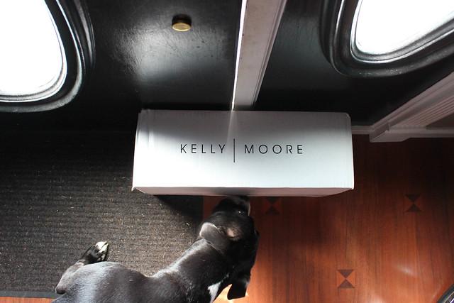 Kelly Moore bag