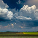 #CloudScape by Adelino Goncalves