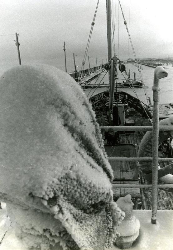 Зима снег с рубки вид