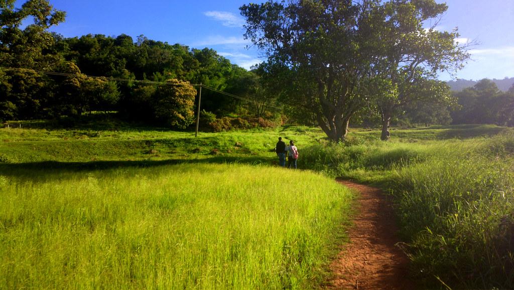 Swamimalai hills, Yelagiri, TN