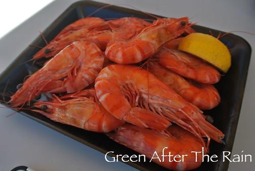 150908c Sydney Seafood Market _53