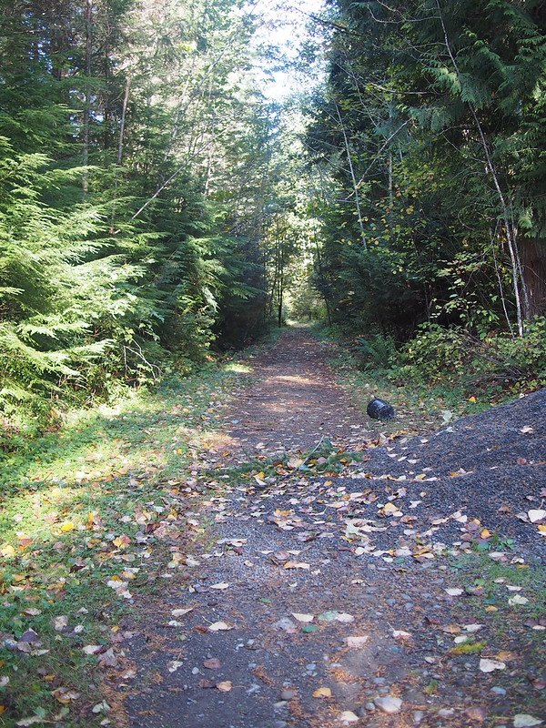 Foothills Trail Branch: Unlike the main section between Puyallup and Buckley, this section will likely never be 'improved' as it's rather 'out there.'  It ends at the ghost town of Melmont.