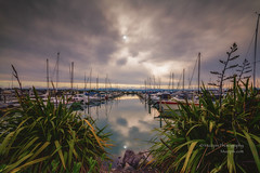 muzzpix-nz posted a photo:Facebook    | 500px  | WebsiteWhen a easy sunset does not appear on demand a bit of lateral thought is needed . Not a bad thing at all really  ... makes us think about stuff .There is a little of a golden hint of sunset but thats all ... Tauranga marina at Sulphur Point .