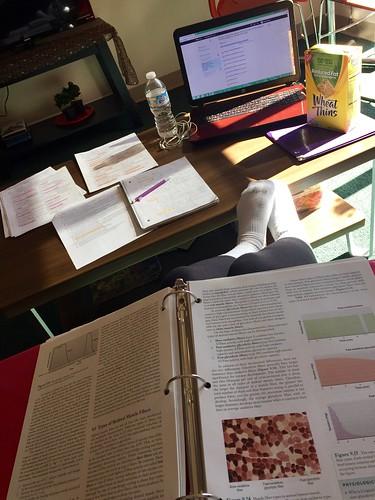 Study Habits Die Hard