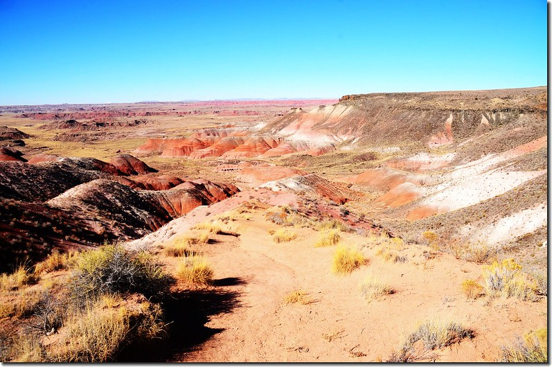 Painted Desert From Nizhoni Point 1