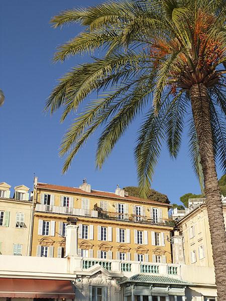 palmiers à Nice