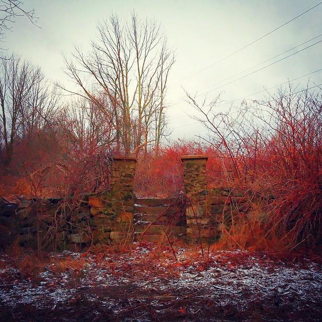 In The Crimson Brush