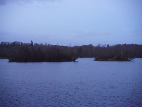 Lake in Woolhampton