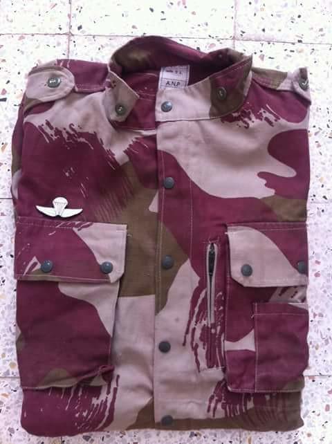 البذلات الجيش الوطني الشعبي الجزائري [ ANP / GN / DGSN / Douanes ]  - صفحة 9 32353745193_86cd7f7086_b