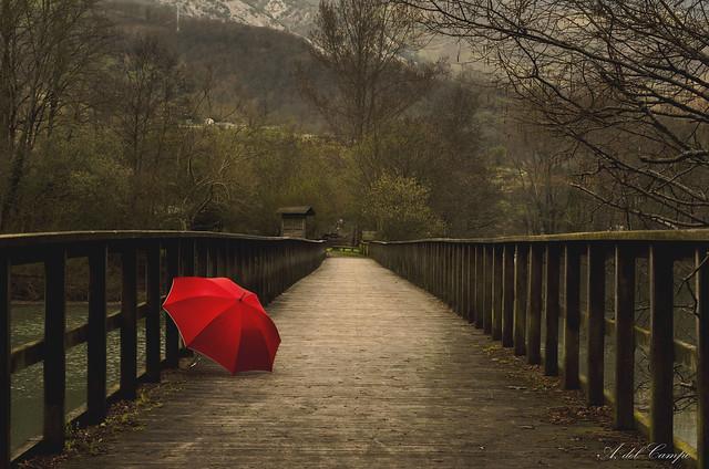 Paraguas Rojo (11/53)