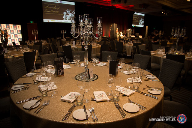2015 SLSNSW Awards of Excellence