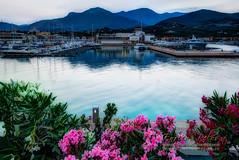 LOANO Tramonto su mare e monti (con fiori)