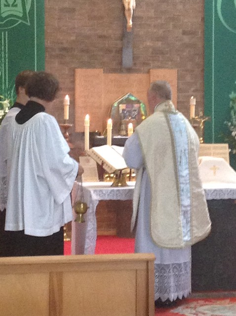 Pilgrimage to Our Lady of the Taper Cardigan