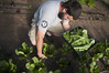 AmeriCorps NCCC member working at the Noyo Food Forest by AmeriCorpsNCCC