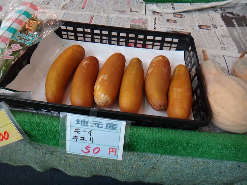 2015Kagoshima128