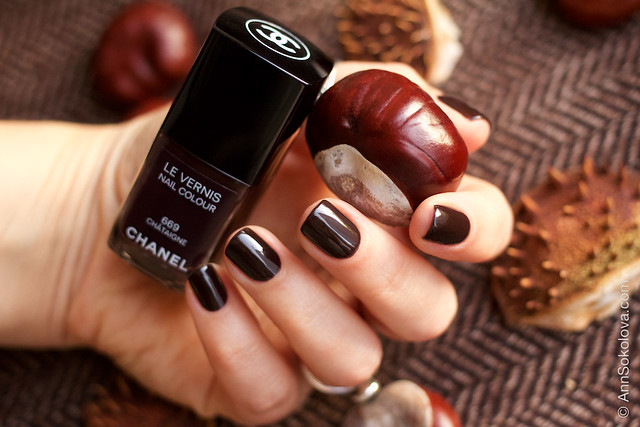 06 Chanel Le Vernis 669 Chataigne Ann Sokolovs swatches