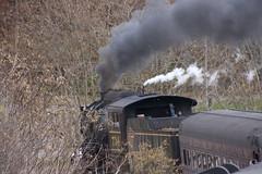 Western Maryland Scenic Railroad  (211)