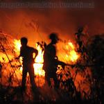 2015-09_RawaKuno-Fires_faj_016_wm